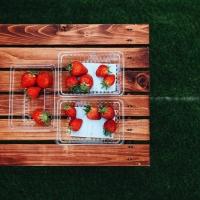 予約不要でいちご狩り。南部に「美らイチゴ糸満農園」がオープン!